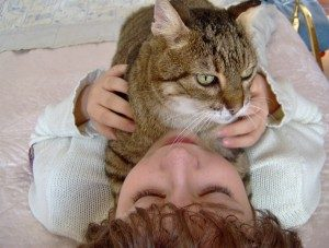 I gatti proteggono dalle allergie