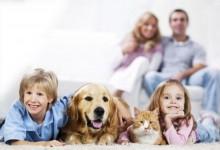 Cani e gatti contribuiscono a tenere unita la famiglia