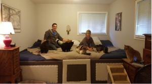 2015-10-08 15_06_35-Una coppia costruisce un letto gigante per i gatti e cani di casa - La Stampa
