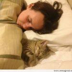 donna-che-dorme-con-il-gatto-400x311