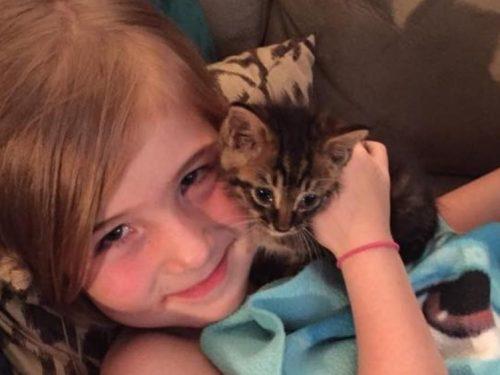Bimba di 5 anni aiuta a salvare un gattino trovato in strada e diventano inseparabili amici