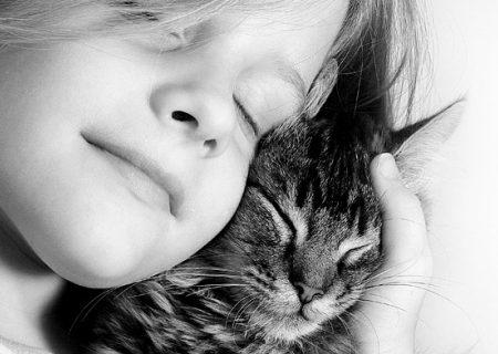 L'empatia, gatti fatti e misfatti