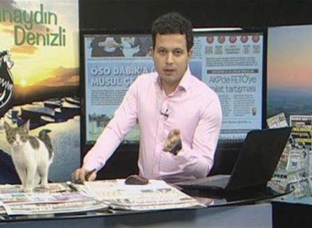 Turchia, gatto piomba in diretta Tv