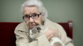 Lovecat@Passioneperigatti