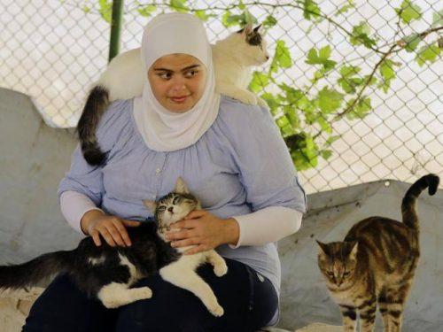 Siria, le altre vittime della guerra: nel rifugio dove i volontari curano cani e gatti