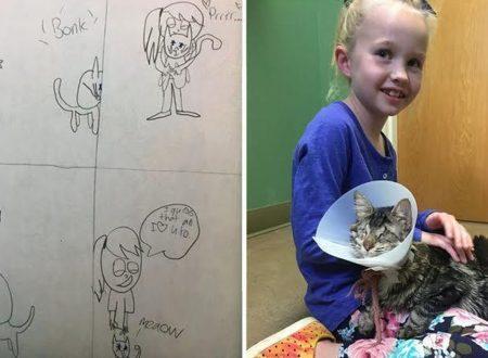 Bimba di 8 anni disegna la sua vita con un gatto cieco convincendo la famiglia ad adottarlo