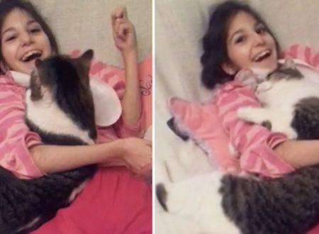 NEWSIl gatto che nessuno voleva fa impazzire di gioia una ragazza speciale