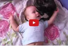 Il fratellino umano piange, la reazione del gatto è tenerissima