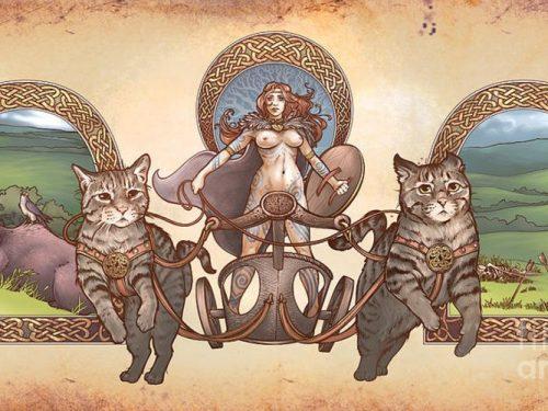Dall'Egitto all'Antica Roma, sino alla Scandinavia e al Medioevo – Storie di Gatti e curiosità