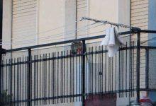 Allarme: Cani e gatti lasciati sui balconi, denunciate