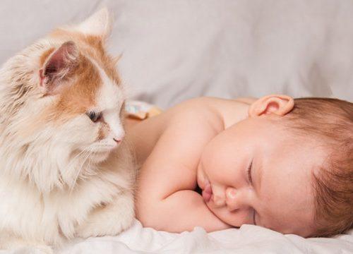 I bambini che passano più tempo cani e gatti si ammalano di meno di otiti e malattie respiratorie
