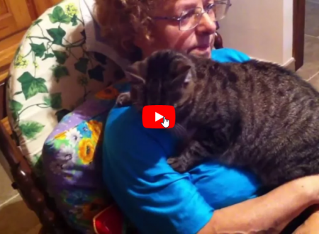 Marta la più dolce nonnina pelosa ha 20 anni viveva in strada