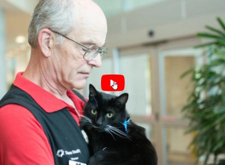 Junior il gatto che fa volontariato civile insieme al suo papà Piter