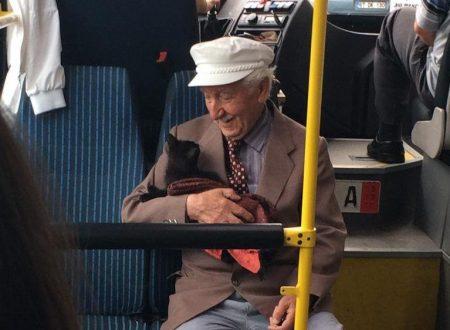 Un uomo e un gattino su un autobus attira l'attenzione di tutti