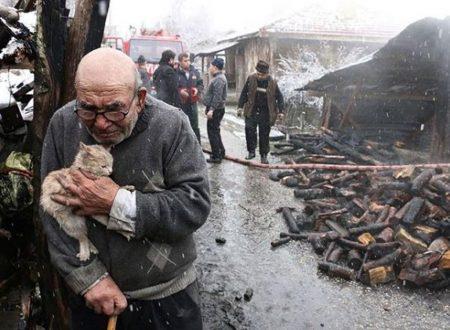 Una foto che ha commosso il web: un incendio gli distrugge la casa, l'anziano stringe al petto il gatto salvato
