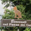 Brolo il Paese dei Gatti e la sua Leggenda