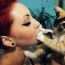 Il tuo gatto non ama essere preso in braccio ? Cerca di capire perché