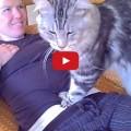 Come il tuo gatto ti ama
