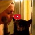 Quando un gatto decide di amarvi .. non c'è nulla che possiate fare