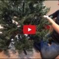 Mamma prepariamo l'albero di natale