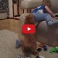 Gatto riprende un bambino dispettoso.