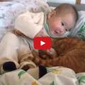 I gatti amano i bambini.